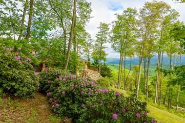 The Rock in the beautiful Blue Ridge Mountains, with room to explore around the home