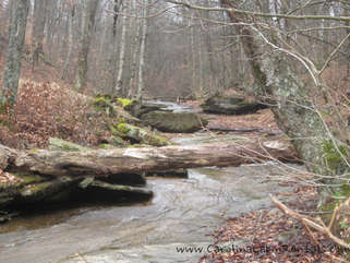 The creek at Village Creek ... just a short 2 minute walk to enjoy this great mountain stream