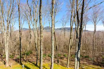 Mountain Views with Carefully-trimmed Hardwood Trees in Back Yard