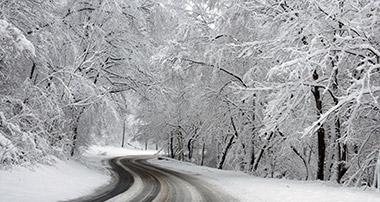 Carolina Region: Winter Storm Update