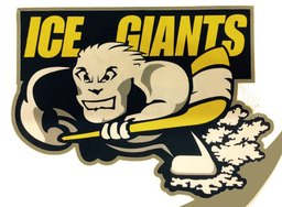 Turnhout Ice Giants