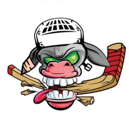 Hockey Donkeys
