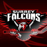 Surrey Female Alumni Falcons