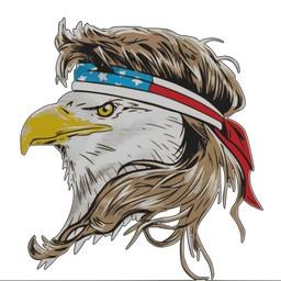 Screaming Freedom Eagles