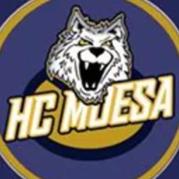 HC Moesa