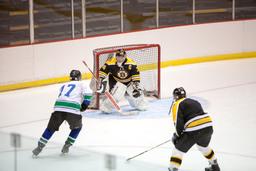 Abbotsford Bruins