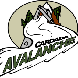 HC Cardada Avalanche