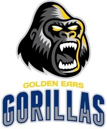 Golden Ears Gorillas