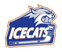 Spring 2014 - Ice Cats