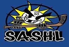 Sylvania Adult Safe Hockey League