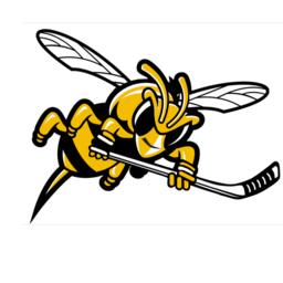 4 Blackcomb Bees