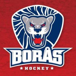 Borås Lions