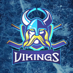 Vikings Hockey Team