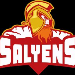 SALYENS