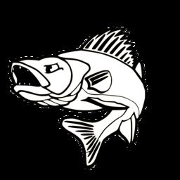 West Coast Walleye