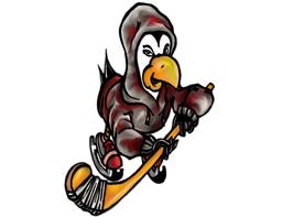 Hockeytutorial .com