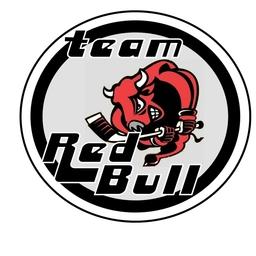 Team Redbull