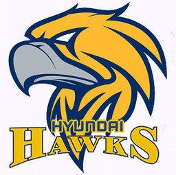 Hyundai Hawks