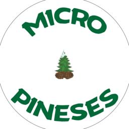 Micro Pines