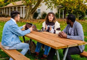 Three Ethnically Diverse Students Studying Outside
