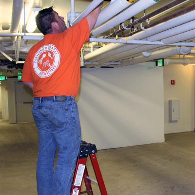 Commercial Plumbing Services - Maintenance