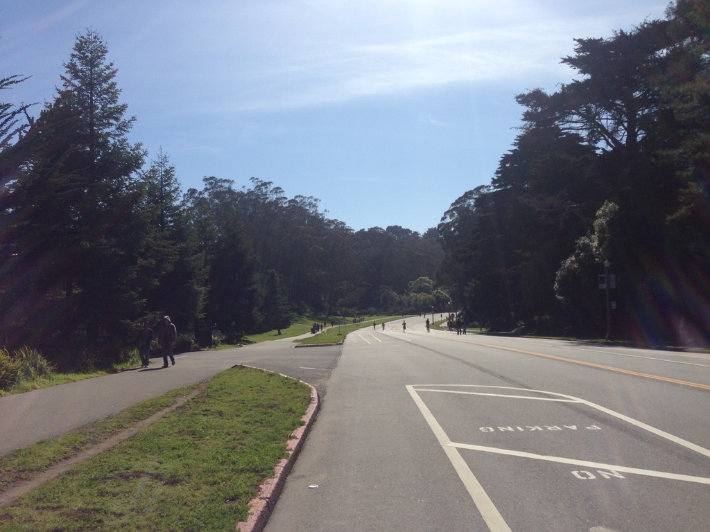 Golden Gate Park, San Francisco, CA, USA
