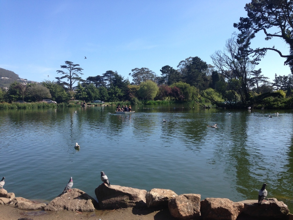 Stow Lake Waterfalls & Park