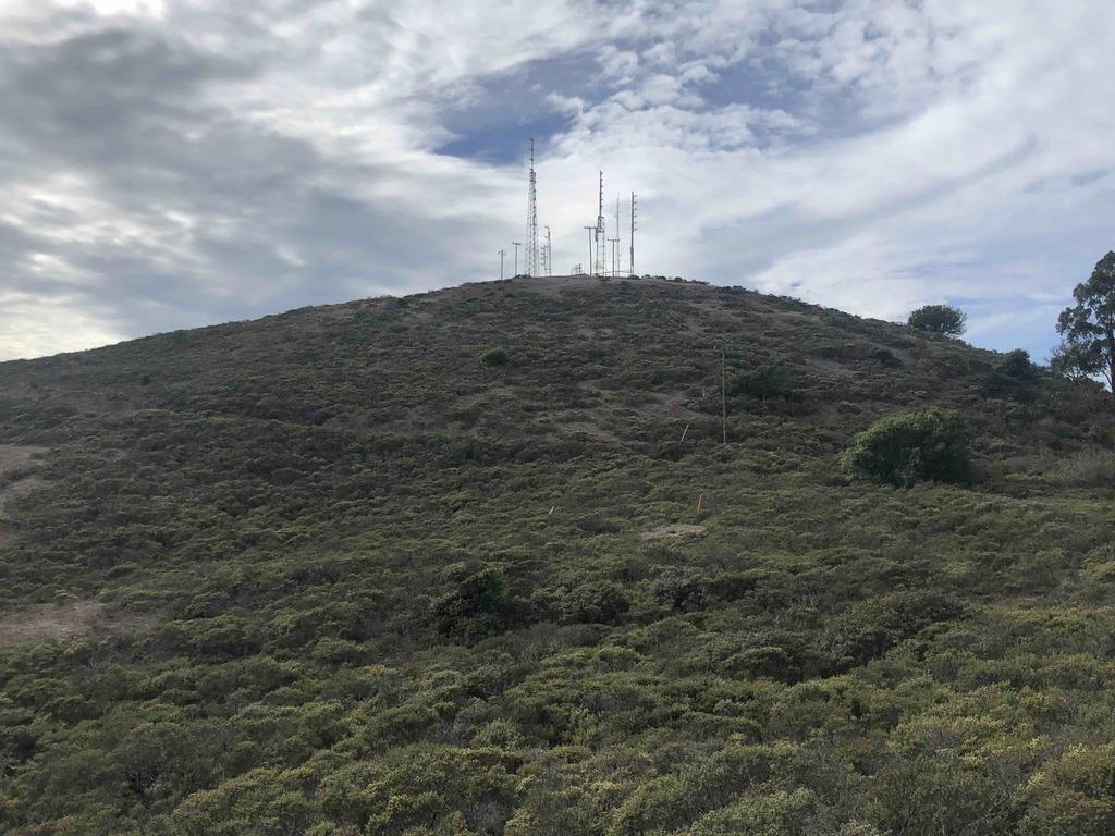 SCA Trail, Sausalito, CA 94965, USA