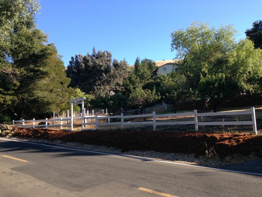 Walnut Creek, CA 94597, USA