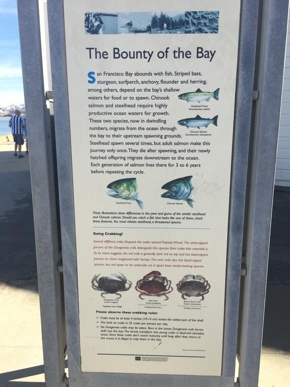 Fishing Pier At Crissy Field