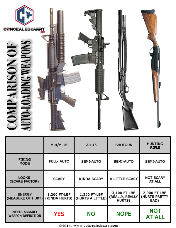 Why Assault Weapons Should Not Be Banned Essay Examples - image 6