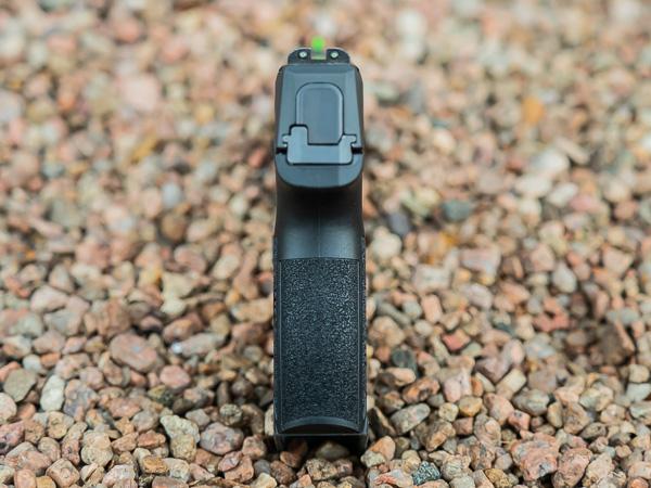P365 Backstrap Rear View