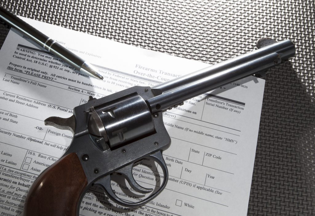 Firearm Background Check