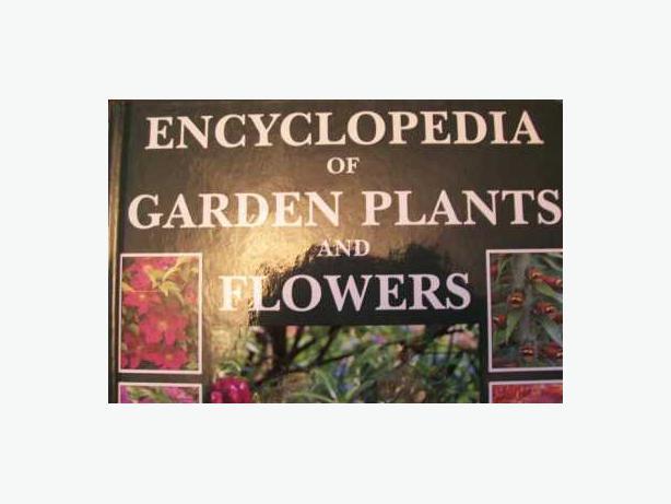 Encyclopedia Of Garden Plants And Flowers By Lance Hattatt