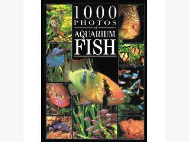 Books on aquarium fish:  tropical, cichlids and catfish - all like new!