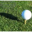 Golf Balls - Repackaged by the dozen