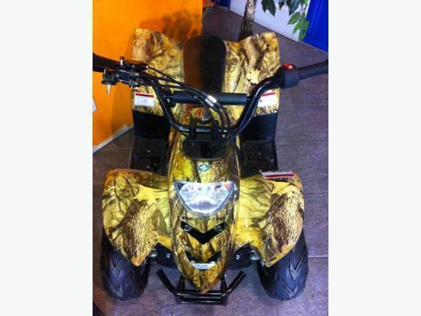 ATV's byTAOTAO MINI ATVS! from www.derand.com