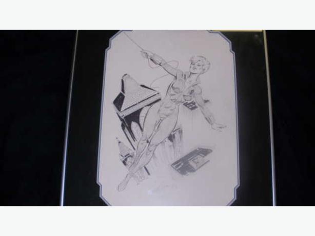 Paul Ryan Signed Original Comic Art  Spider Woman Framed