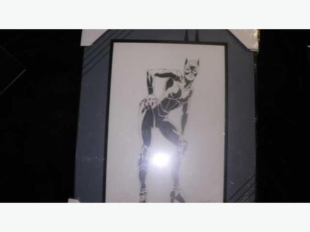 Paul Ryan Signed Original Comic Art Cat Woman Framed