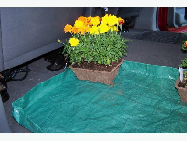 Plastic mat to keep your car trunk clean when hauling plants