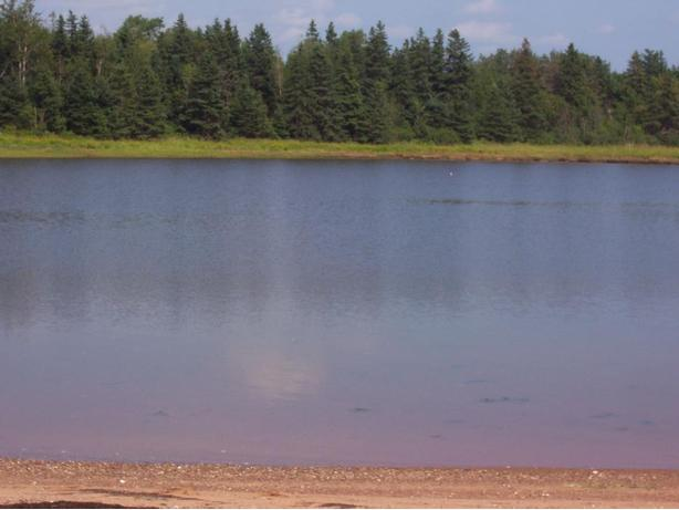Waterfront Land for Sale,  Wood Islands, Prince Edward Island