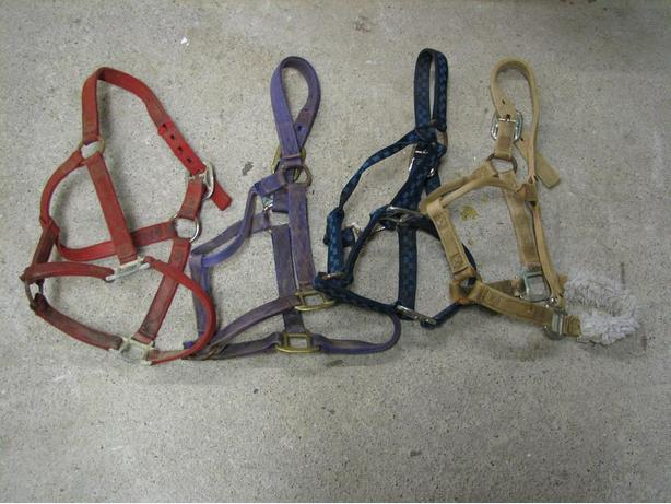 Used Horse Halters all sizes