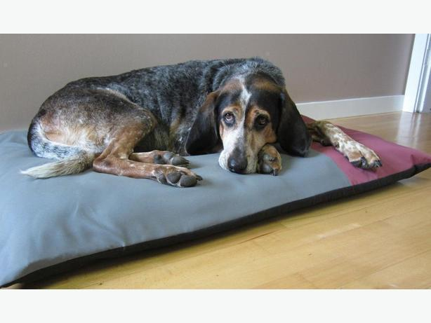Eco-Orthopedic Dog Mattress