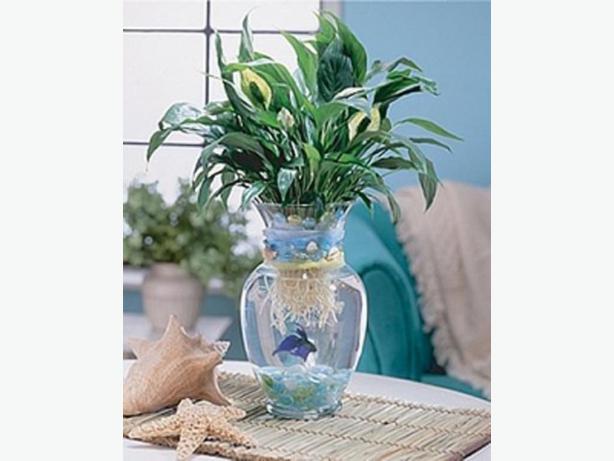 Large Glass Vase or Betta Fish Aquarium - Excellent Condition!