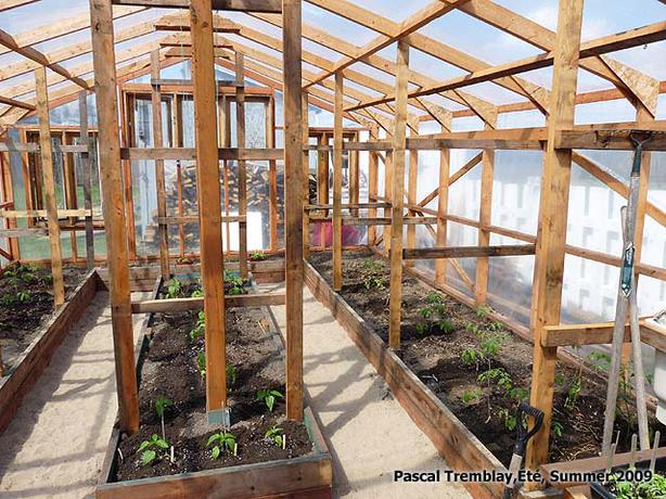 FREE: (Greenhouse Building Plan)