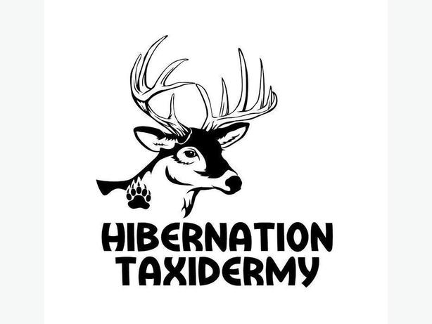 Hibernation Taxidermy (www.hibernationtaxidermy.com)