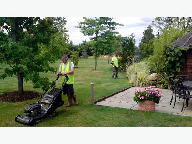 Big Island Courtenay Cleaning Services