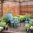 Brand NEW Fully Furnished Garden Studio for Rent Weekly in Kitsilano #197W