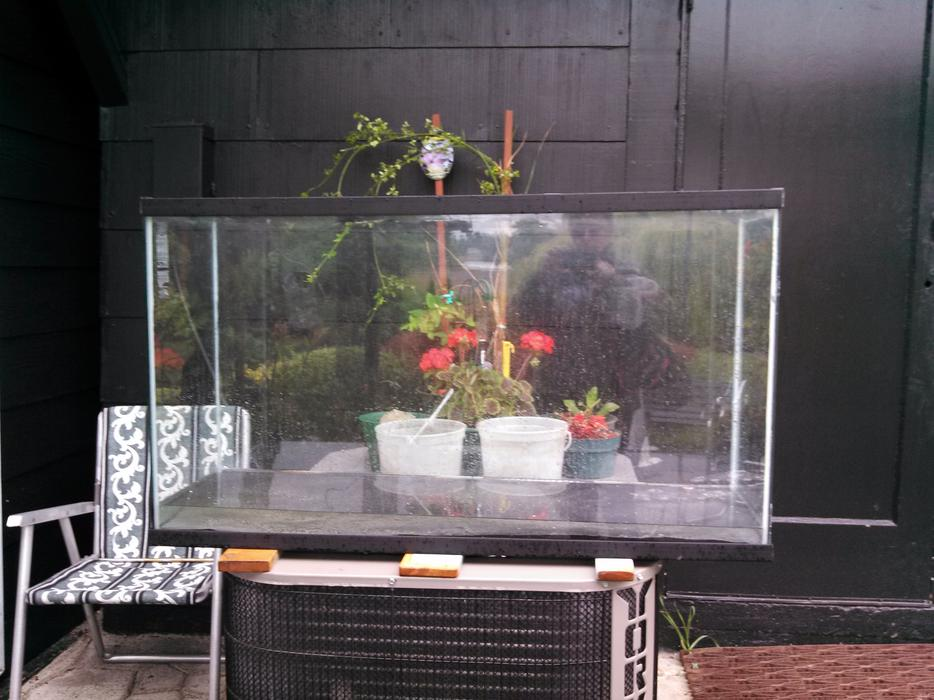 90 gallon tank doesn 39 t leak can be used for fish or for How to fix a leaking fish tank