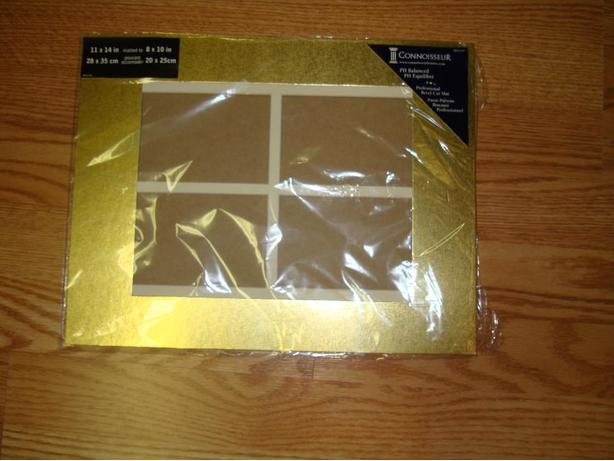 New 11 x 24 inch Gold Picture Mat - Excellent Condition!
